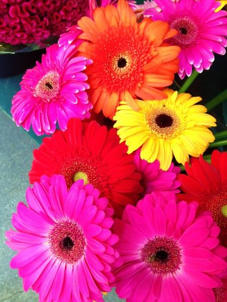 Flowers around SoHo