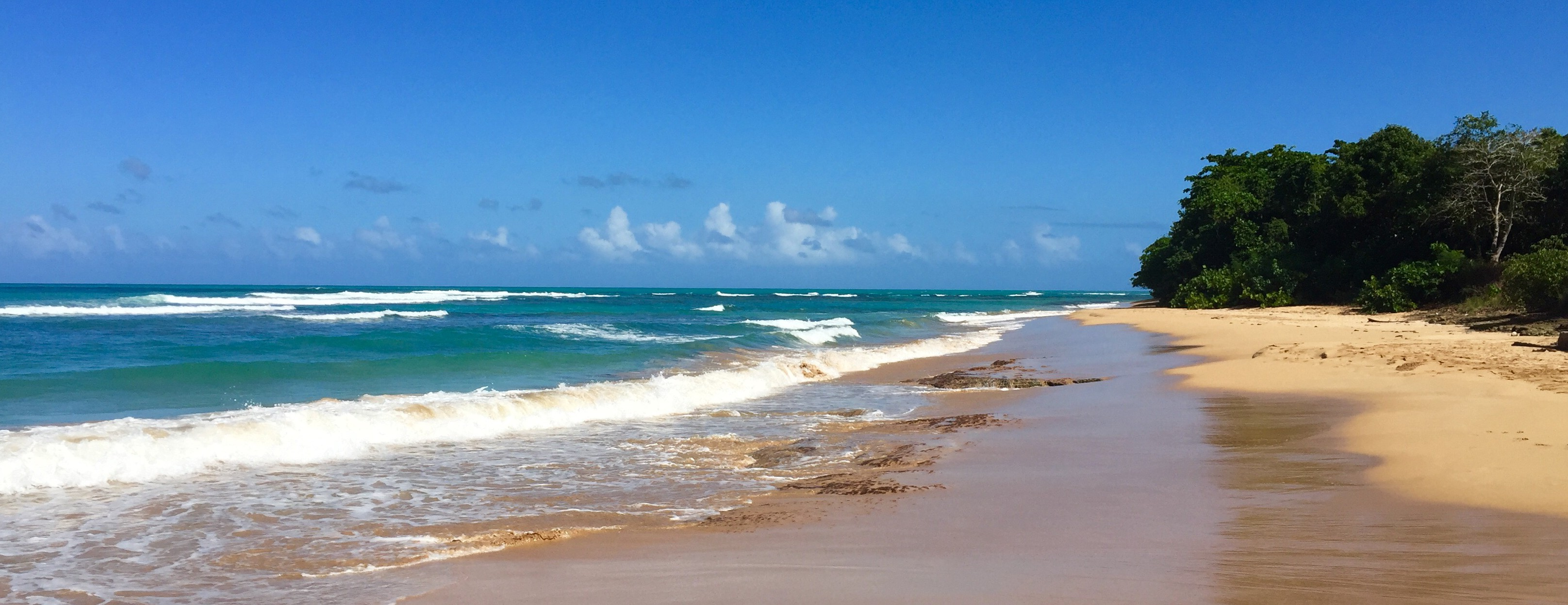 Playa La Selva Puerto Rico - Beaches and Brie