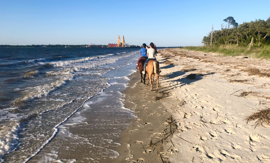 two women riding two different horses on the beach, the ocean to the left and the sand to the right.